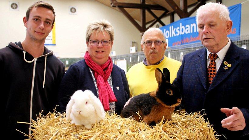 137 Kaninchen stellen sich in Wierthe der Bevölkerung vor - Peiner Nachrichten